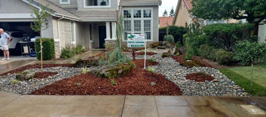 Drought tolerant landscaping after