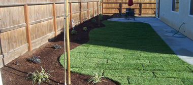 Before Landscaping - cs2