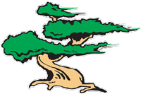 Anderson Landscaping Tree from Logo